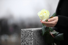 Woman Holding White Rose Near Grey Granite Tombstone Outdoors, Closeup. Funeral Ceremony