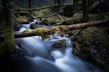 Creek Flowing Between Moss-cla...