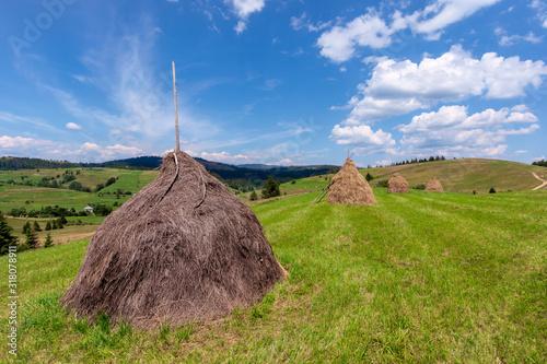 Fotografia, Obraz haystack on the grassy field in summer