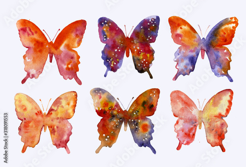Fotografie, Obraz Set of butterflies, collection of elements for design and creativity