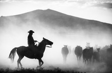 Silhouette Mid Adult Man Riding Horse On Field Against Mountain