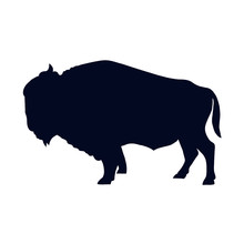Buffalo Silhouette Isolated On White Background Vector Illustration