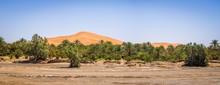 Oasis In The Sahara Desert Und...