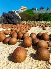 большое количество лангана на песчаном пляже. Горы фруктов