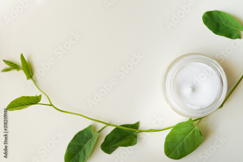 cosmetic products with mint leaves on white background with a copy space