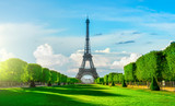Fototapeta Fototapety z wieżą Eiffla - Champs de Mars
