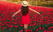 Young woman standing on red tulips field enjoying freedom