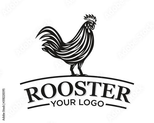 Fototapeta Rooster Logo Vector Template Design Illustration