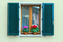 The Shutters And Cyclamens
