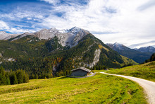 Alpine Meadow In Bavarian Alps...