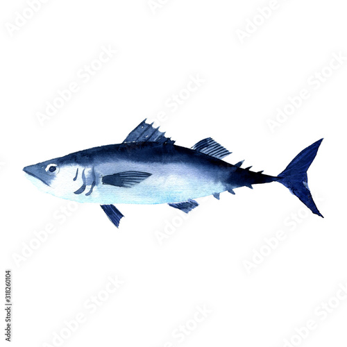 watercolor drawing fish, horse mackerel, scad Fototapeta
