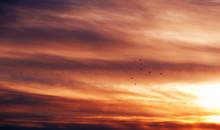 Clouds In The Blue Sky. A Visi...