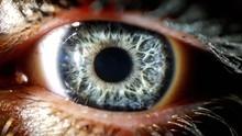 Full Frame Shot Of Human Eye