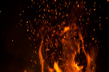 Fototapeta na wymiar fire on a black background orange flame night fire