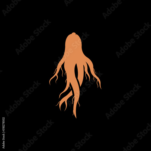 red ginseng root vector logo design isolated on black background Canvas Print