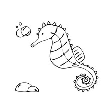 Seahorse Doodle Vector Illustration In Hand Drawn Style.
