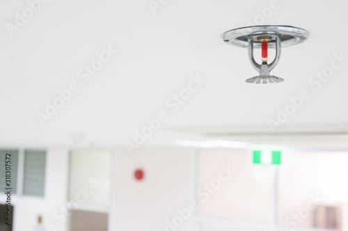 Obraz Fire fighting equipment, sprinkler on white ceiling background.Automatic head fire sprinkler extinguisher selected focus on sprinkler.Fire fighter safety concept. - fototapety do salonu