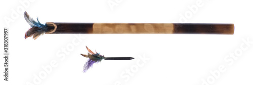 blowgun  ranged  weapon consisting of a long narrow tube for shooting light pro Canvas Print