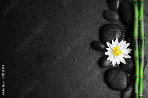 Fotomural Stones, bamboo, lotus flower and space for text on wet black background, flat lay