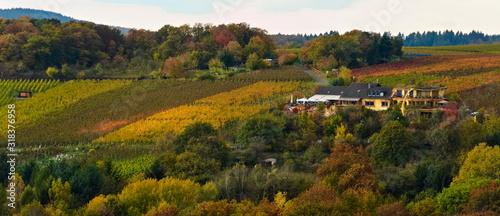Obraz na plátně Landschaft im Herbst mit bunten Blättern