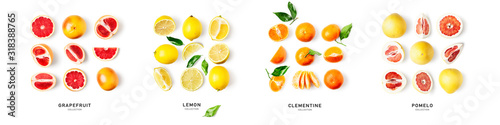 Fotografie, Obraz Different citrus fruits composition and creative banner