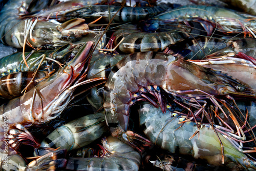 Close-Up Of Crustacean For Sale In Market Canvas Print