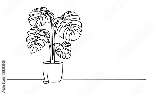 Fototapeta Continuous one line drawing of a flower in a pot obraz na płótnie