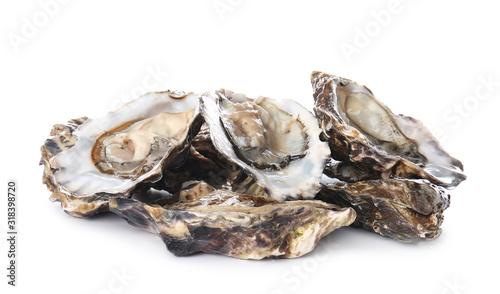 Fototapeta Tasty oysters on white background obraz