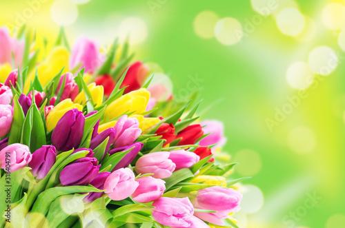 Fototapeta Spring tulip flowers bouquet blurred background obraz