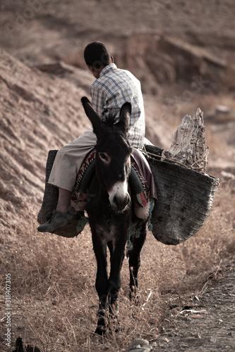 Fotografía Side View Of Man Sitting On Donkey At Field