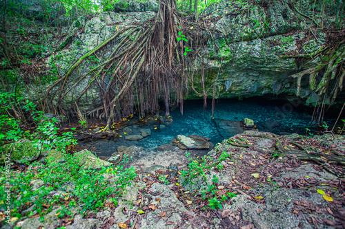 Fototapeta Cotubanama National Park in Dominican Republic 3