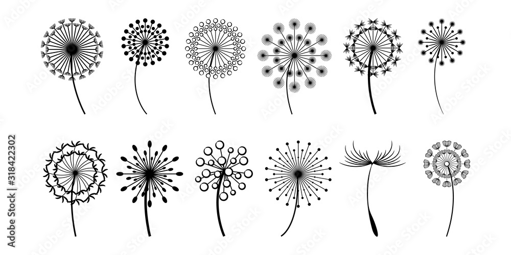 dandelion vector set collection graphic clipart design