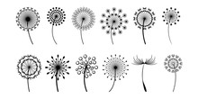 Dandelion Vector Set Collectio...