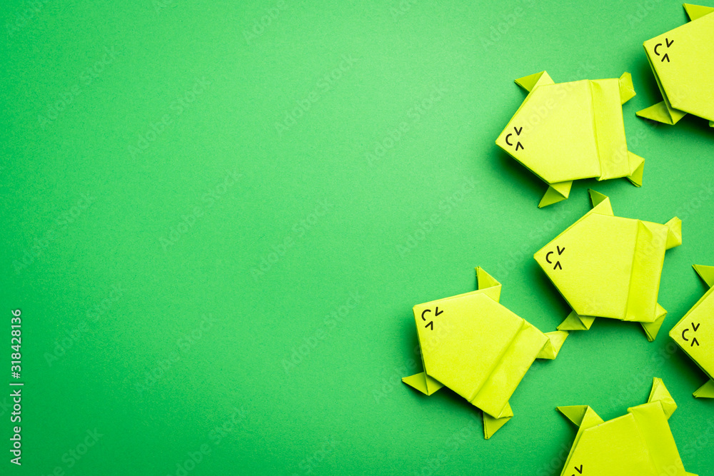 Fototapeta Group of origami green paper frogs isolated on green background