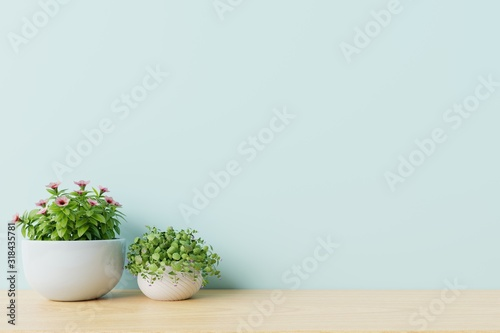 Photo Modern empty room with plants on floor wooden,blue wall.