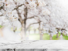 Empty White Marble Stone Table...