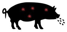 Pig Plague Vector Icon. Flat P...