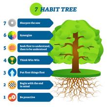 7 Habit Tree Success Mindset S...