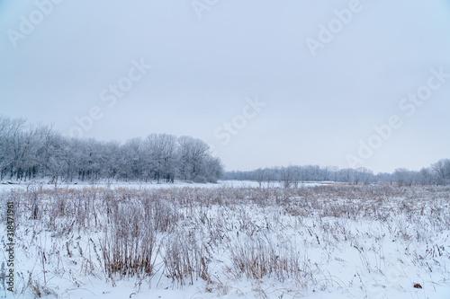 Fényképezés Winter landscape. A snow field in front of a forest