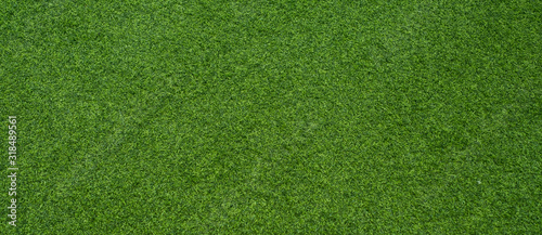 Obraz green grass background, football field - fototapety do salonu