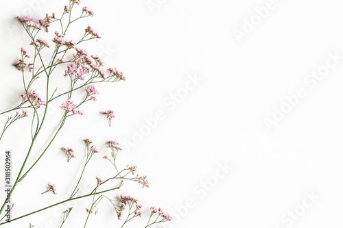 Kompozycja kwiatów Różowe kwiaty białe tło. Leżał płasko, widok z góry