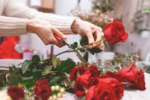 Flower Shop Seller Prepares Ro...