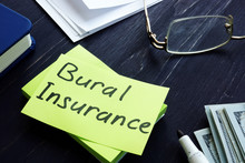 Burial Insurance Memo On The G...