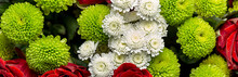 Bouquet Of Roses And Chrysanth...