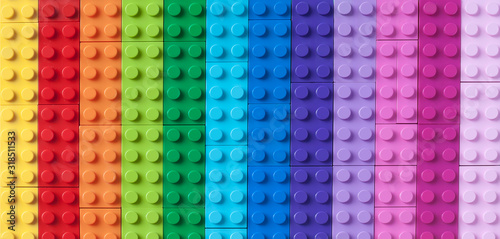 Many colorful toy bricks in top view Canvas Print