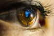 Close-Up Eye Of Person