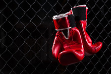 Pair Red Boxing Gloves Hang On...