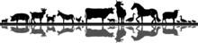 Animal Domestic Farmer Outline...