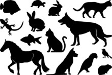 Animal Pets Set Silhouette Out...