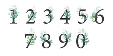 Floral Number Set With Greenery Decoration. Elegant Digits 1, 2, 3, 4, 6, 7, 8, 9, 0 With Botanic Leaves For Wedding Invitation And Card Design Composition. Vector Elements